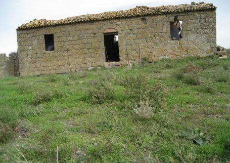 Aztp 225 Azienda Agricola Pitigliano